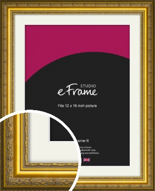 Ornate Gold Picture Frame & Mount, 12x16