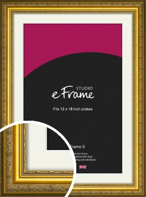 Ornate Gold Picture Frame & Mount, 12x18