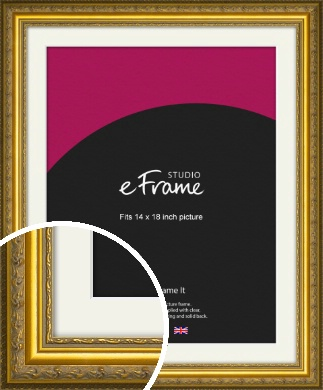 Ornate Gold Picture Frame & Mount, 14x18