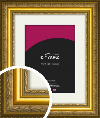 Ornate Gold Picture Frame & Mount, 15x20cm (6x8