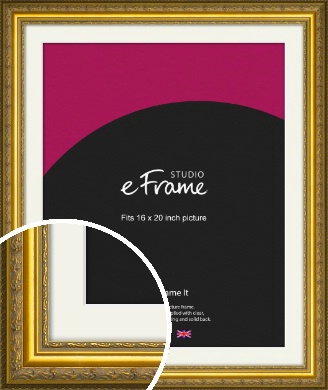 Ornate Gold Picture Frame & Mount, 16x20