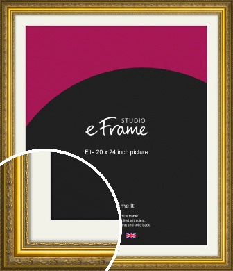 Ornate Gold Picture Frame & Mount, 20x24
