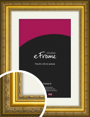 Ornate Gold Picture Frame & Mount, 20x30cm (8x12
