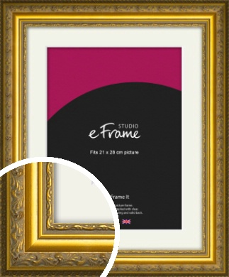 Ornate Gold Picture Frame & Mount, 21x28cm (VRMP-1128-M-21x28cm)