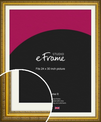 Ornate Gold Picture Frame & Mount, 24x30