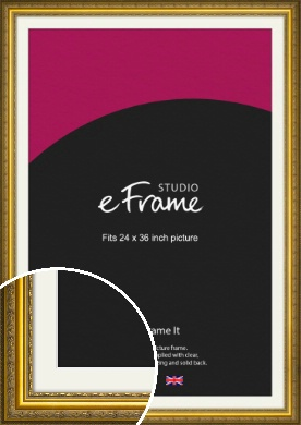 Ornate Gold Picture Frame & Mount, 24x36