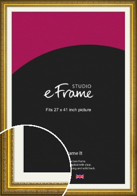 Ornate Gold Picture Frame & Mount, 27x41
