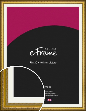 Ornate Gold Picture Frame & Mount, 30x40