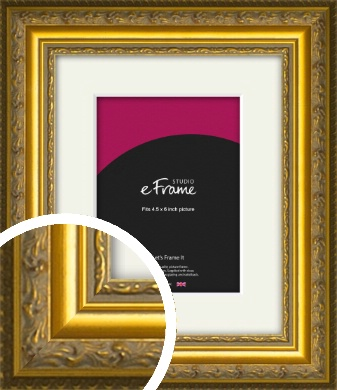 Ornate Gold Picture Frame & Mount, 4.5x6