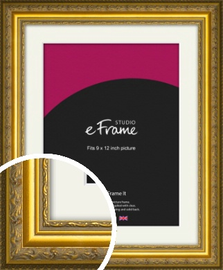 Ornate Gold Picture Frame & Mount, 9x12