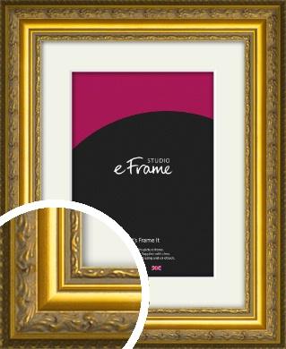 Ornate Gold Picture Frame & Mount (VRMP-1128-M)