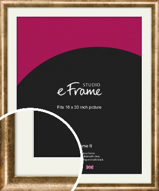 Rounded Edge Antique Gold Picture Frame & Mount, 16x20