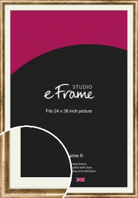 Rounded Edge Antique Gold Picture Frame & Mount, 24x36