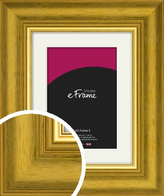 Glamourous Gold Picture Frame & Mount (VRMP-1179-M)