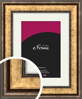 Charming Rustic Gold Picture Frame & Mount (VRMP-134-M)