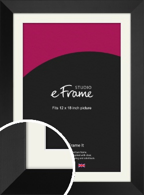 Modern Gallery Style Black Picture Frame & Mount, 12x18