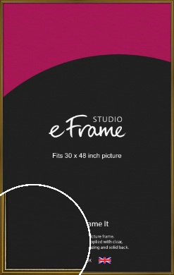 Vintage Gold Picture Frame, 30x48
