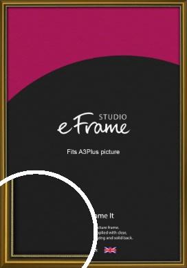 Vintage Gold Picture Frame, A3Plus (VRMP-1233-329x483mm)