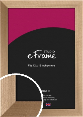 Brushed Champagne Gold Picture Frame, 12x18
