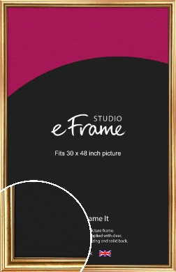 Traditional Gold Picture Frame, 30x48