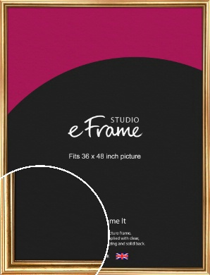 Traditional Gold Picture Frame, 36x48