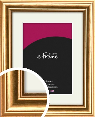 Traditional Gold Picture Frame & Mount (VRMP-212-M)