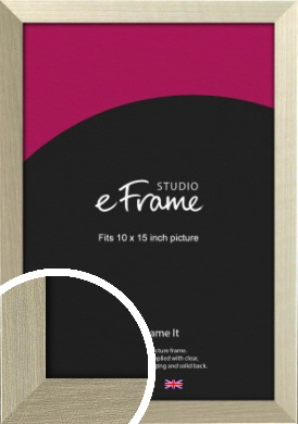 Pale Metallic Etched Silver Picture Frame, 10x15