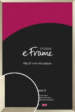 Pale Metallic Etched Silver Picture Frame, 27x41