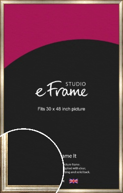 Champagne Gold Fleck & Silver Picture Frame, 30x48