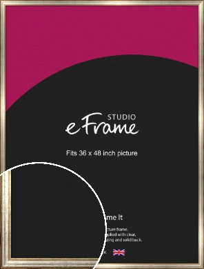 Champagne Gold Fleck & Silver Picture Frame, 36x48