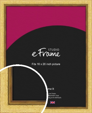 Opulent Gold Picture Frame, 16x20