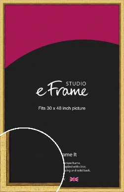 Opulent Gold Picture Frame, 30x48