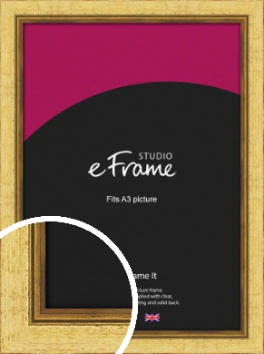 Opulent Gold Picture Frame, A3 (297x420mm) (VRMP-128-A3)