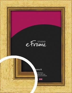 Opulent Gold Picture Frame (VRMP-128)