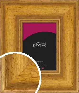 Striking & Opulent Gold Picture Frame (VRMP-135)