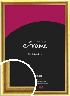Radius Edge Old Gold Picture Frame, A3 (297x420mm) (VRMP-204-A3)