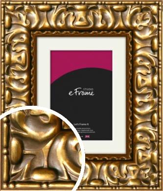 Expressive Parisian Gold Picture Frame & Mount (VRMP-519-M)
