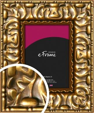 Expressive Parisian Gold Picture Frame (VRMP-519)