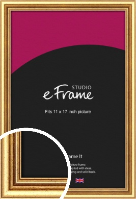 Strong Gold Picture Frame, 11x17