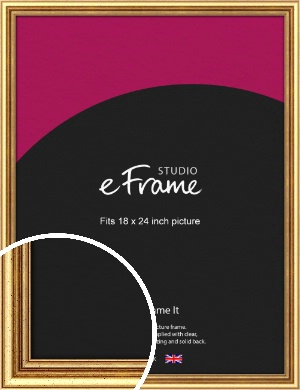 Strong Gold Picture Frame, 18x24