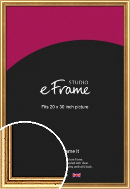 Strong Gold Picture Frame, 20x30