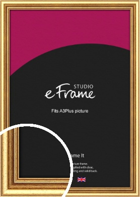 Strong Gold Picture Frame, A3Plus (VRMP-210-329x483mm)