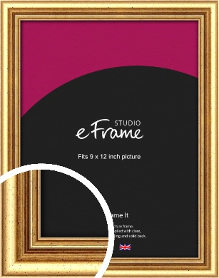 Strong Gold Picture Frame, 9x12