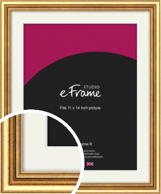 Strong Gold Picture Frame & Mount, 11x14