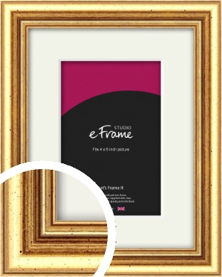 Strong Gold Picture Frame & Mount, 4x6