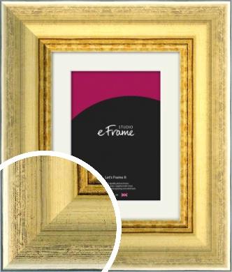 Elegant Gold Picture Frame & Mount (VRMP-711-M)