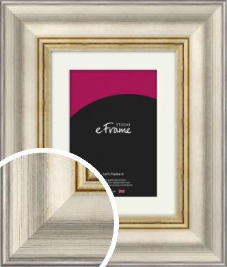 Sumptuous Foil Silver Picture Frame & Mount (VRMP-712-M)