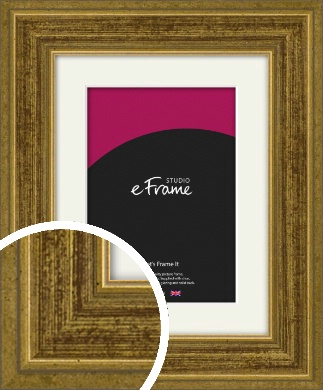 Contrasting Tonal Gold Picture Frame & Mount (VRMP-1325-M)