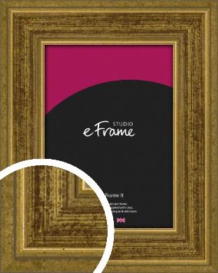 Contrasting Tonal Gold Picture Frame (VRMP-1325)