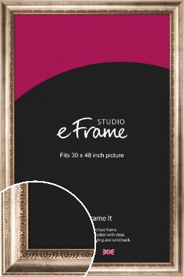 Baroque Silver Picture Frame, 30x48